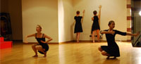 nterdisciplinarity in performances: results of collaboration between dancers, musicians, computer software designers, video artists